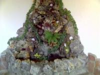 Изграждане на водни алпинеуми